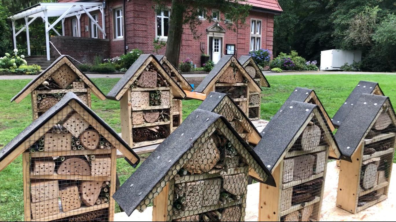 Insektenhotel beim Marbecker Bund
